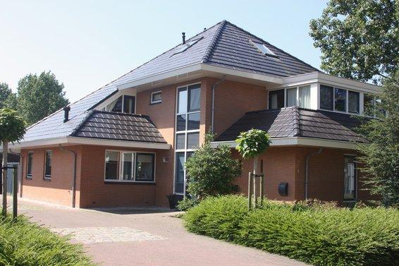 Waterhoen te Groningen
